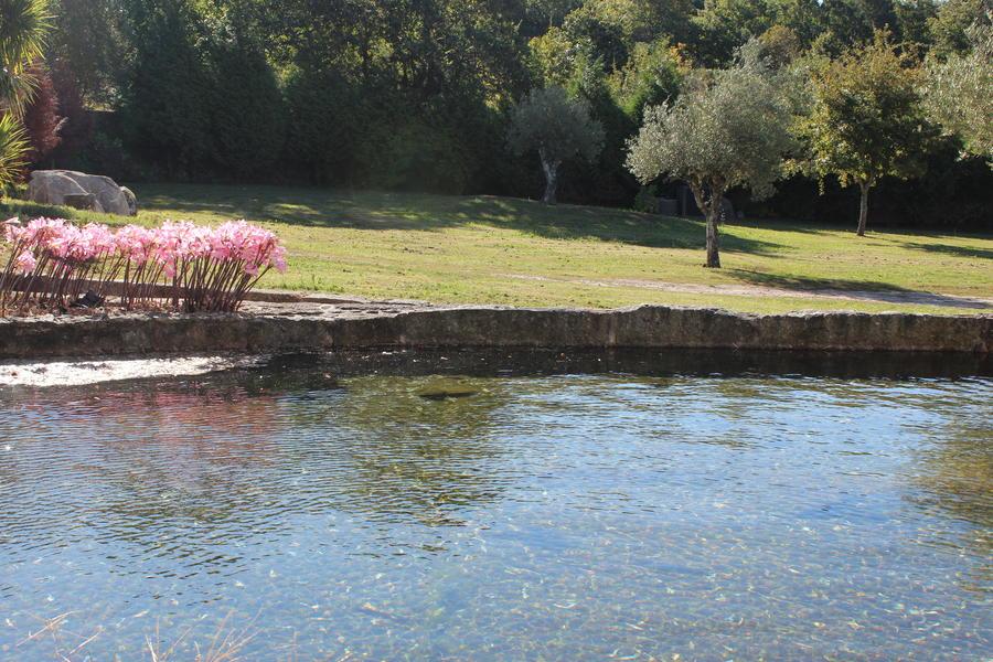 Quinta da Hortelã - A Nature Paradise near Porto #1