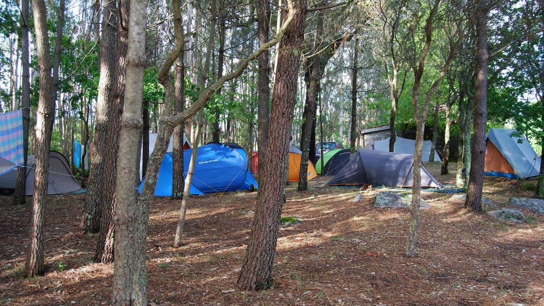 Quinta da Hortelã - A Nature Paradise near Porto #2