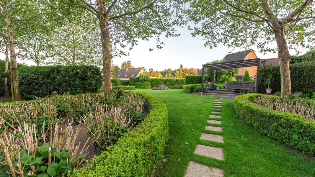 Beautiful green garden next nature place Malesbroek #2