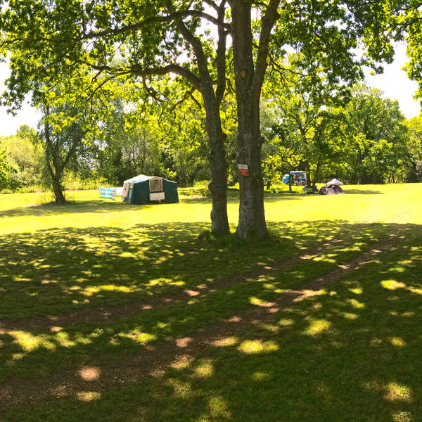 Come camping in our wonderful woodland Emma' glade. 10 minutes from the New Forest. #2