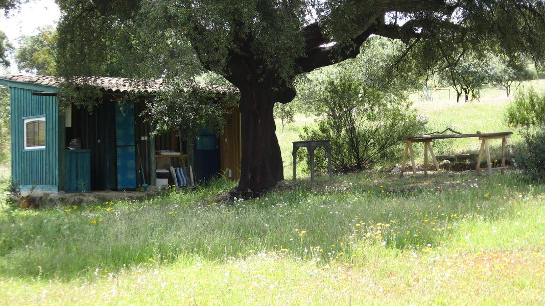 Micro Camping Pulo do Lobo #3