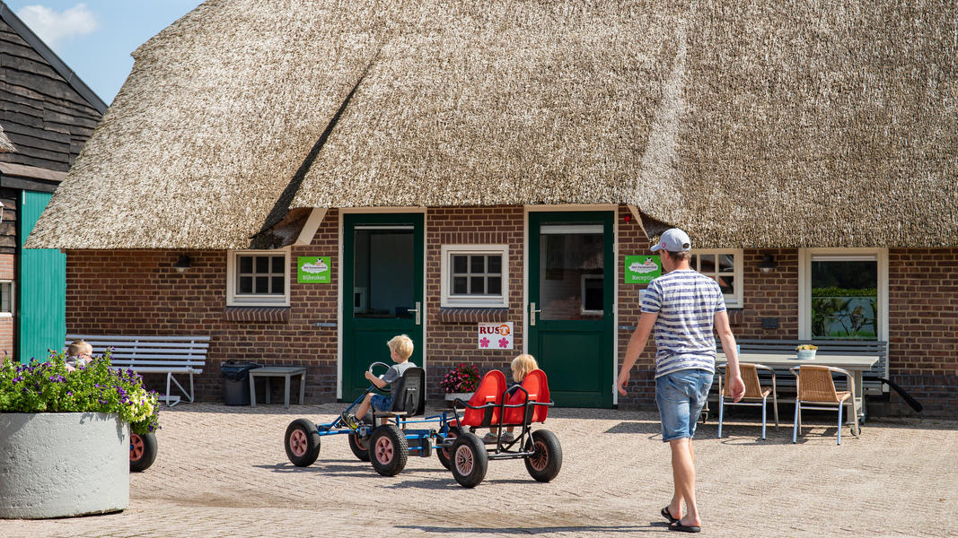 Experience farm life in 'Ommen' in the heart of the Vechtdal Overijssel #11