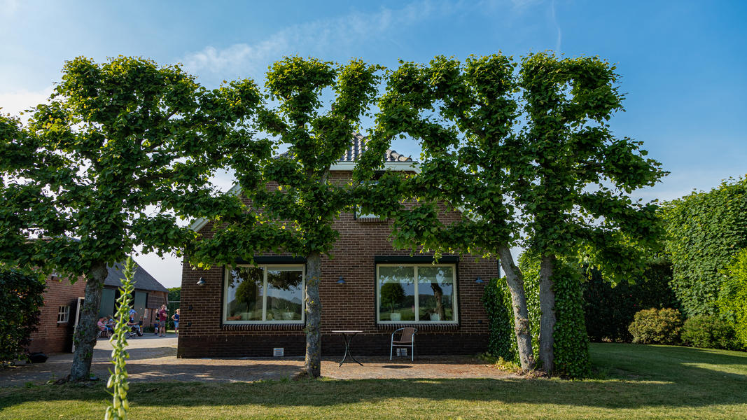 Experience farm life in 'Ommen' in the heart of the Vechtdal Overijssel #6