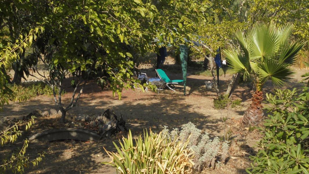 Cerca dos Sobreiros, where you can talk and hear the trees, animals, and sky. #2