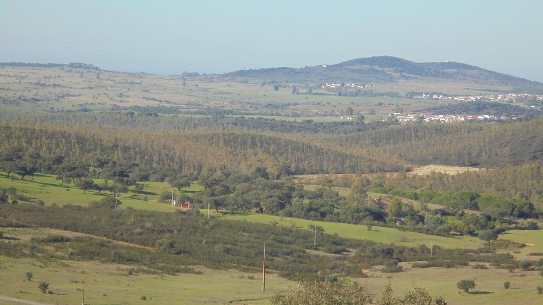 Cerca dos Sobreiros, where you can talk and hear the trees, animals, and sky. #3