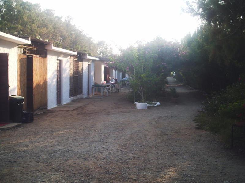 Rethymno Camping #6