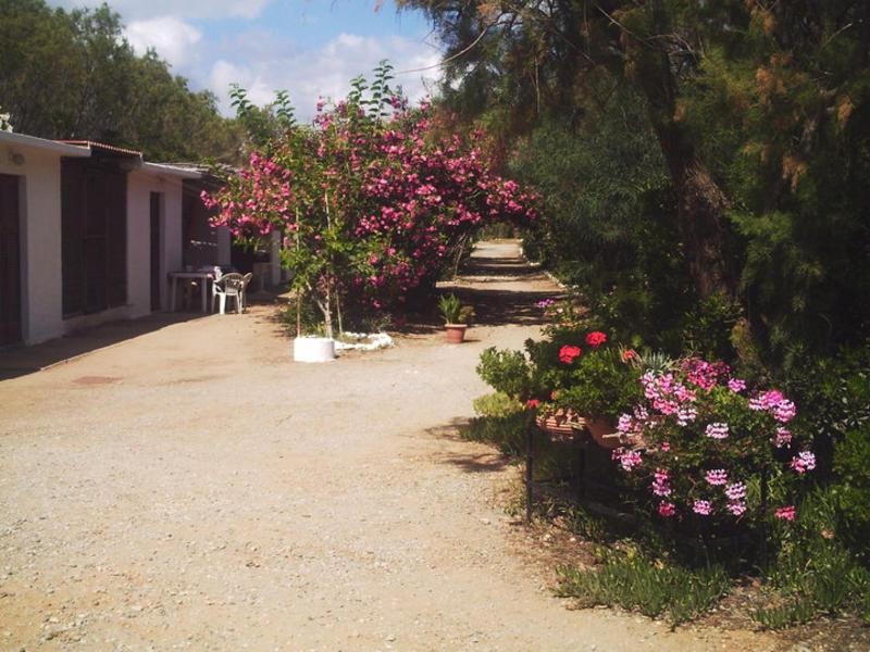 Rethymno Camping #9