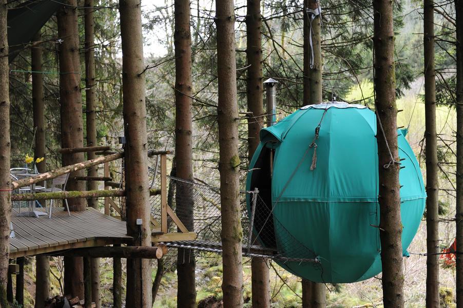 Red Kite Tree Tent #6