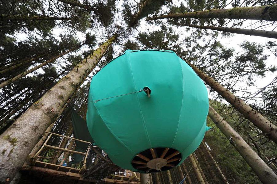 Red Kite Tree Tent #8