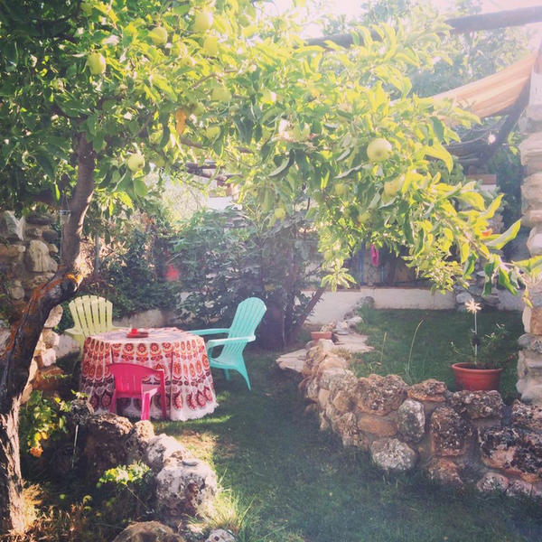 Flowers and Gypsy life in the Sierra Nevada #3