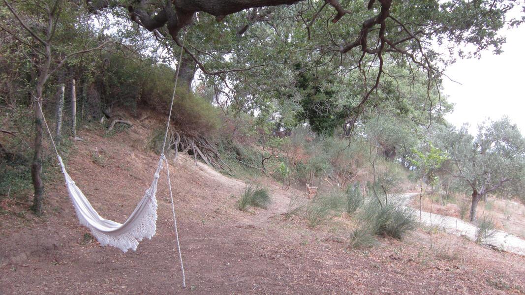 A-ALPHA CAMP #2