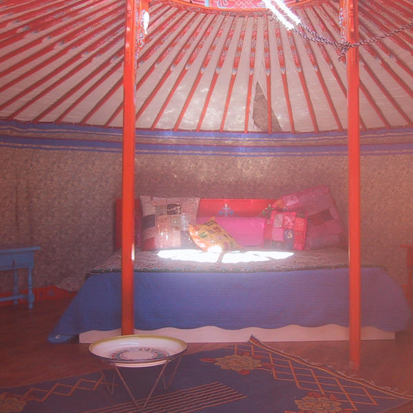 Glamp in a Yurt with flowers and Sierra Nevada mountains #3