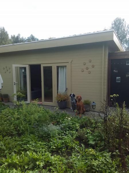 Cozy wooden house in the beautiful, green Druivenstreek #3