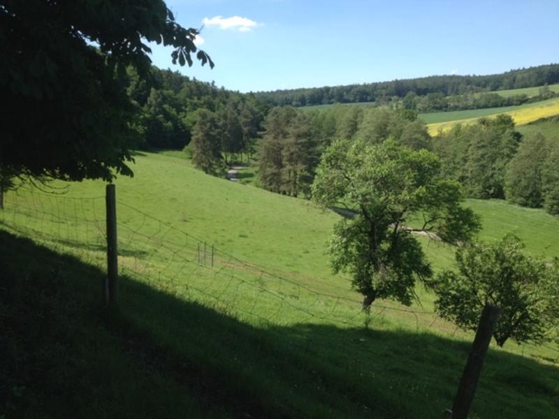 Wildlife Hill 2 micro camping im Naturpark Steigerwald #5