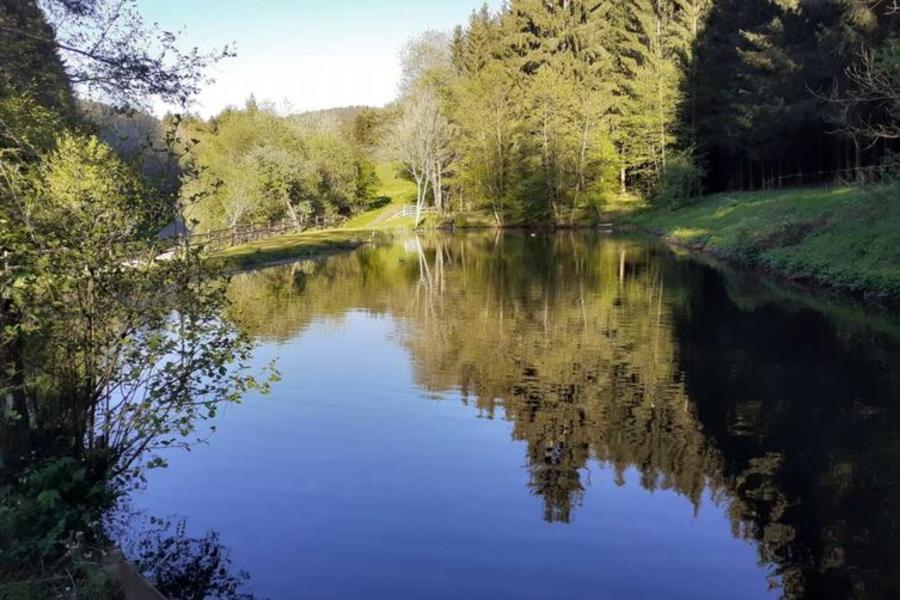 Minicamping an der Densborner Wassermühle #3
