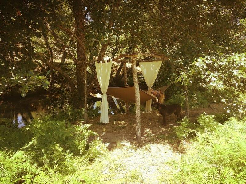 Senses Camping #4