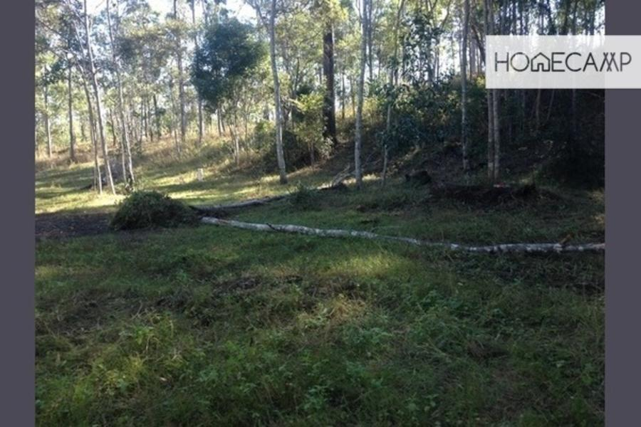 Natural bushland in QLD #1
