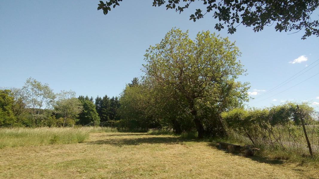 The garden of Ateliers Gerny #4