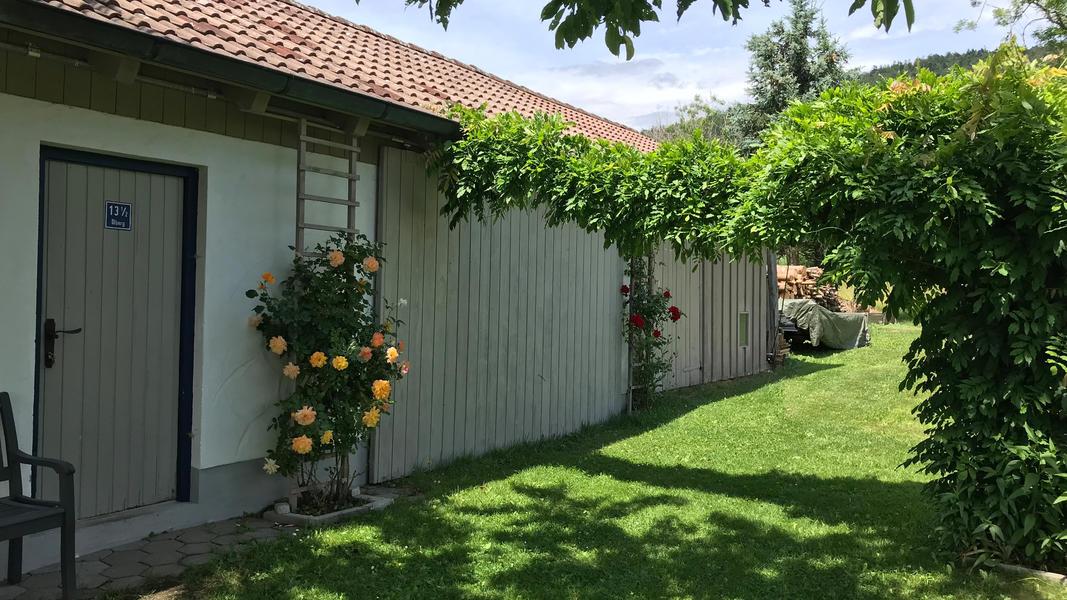 Emmas Garden #6