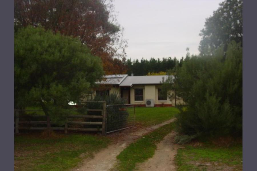 The Bark Mill Vineyard #4