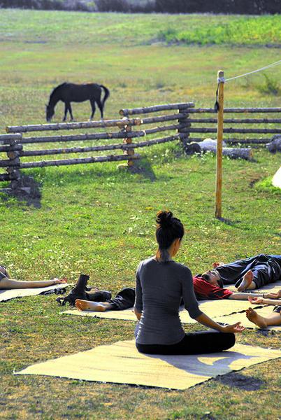 Linden Tree Retreat & Ranch #14