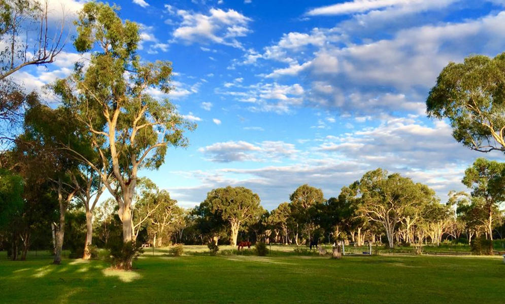 At the foot of The Majestic Blue Mountains theres a Beautiful Farm Semi Rural close to all Amenitie #4