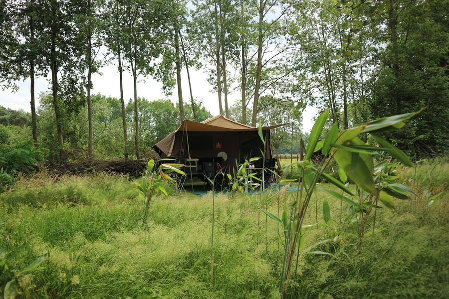 Tent staat klaar. Privé kamperen in hartje Vechtdal #5