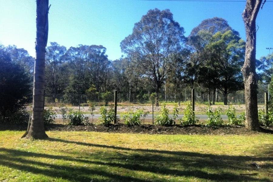 Country Acreage in South West Sydney #1