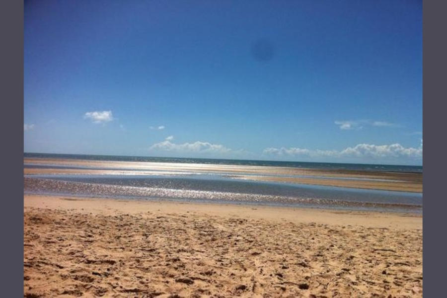 Burrum on the beach #2