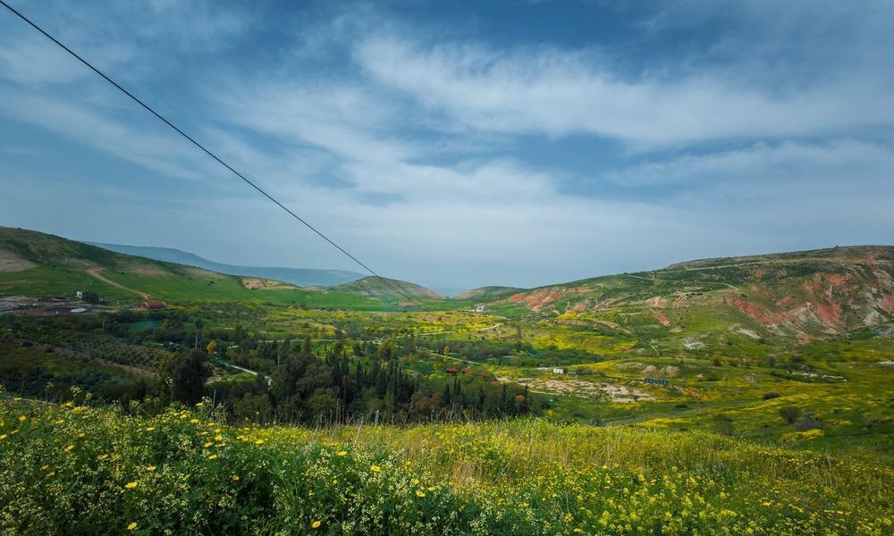 Discover the wildlife of Jordan #1