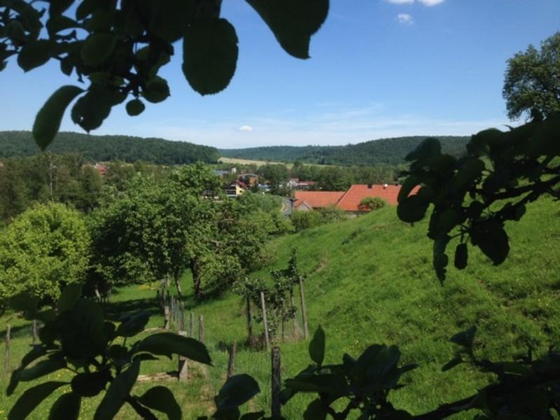 Wildlife Hill 2 micro camping im Naturpark Steigerwald #7