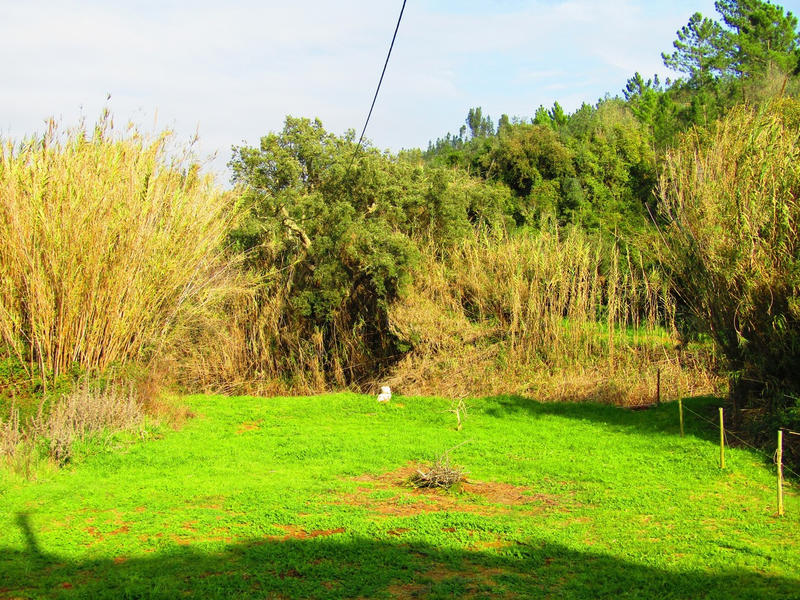 Sandytoes Algarve #5