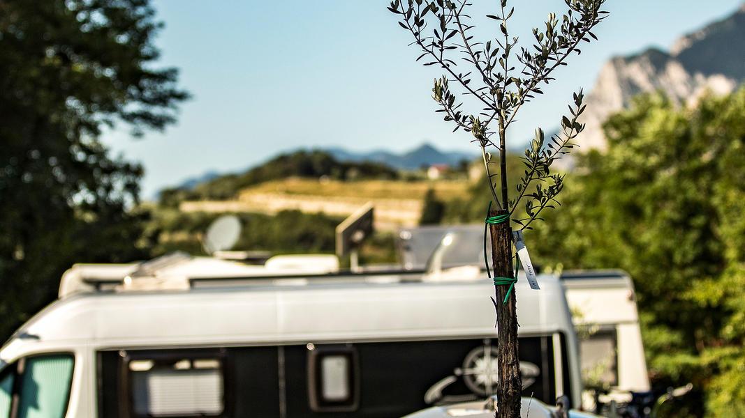 Camping Grumèl #16