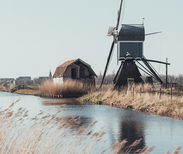 Enjoy nature in the Dutch Green Heart and row around the canals! #11