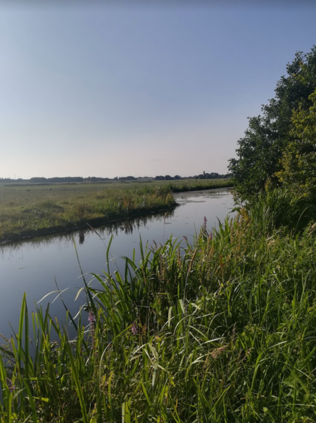 Enjoy nature in the Dutch Green Heart and row around the canals! #12