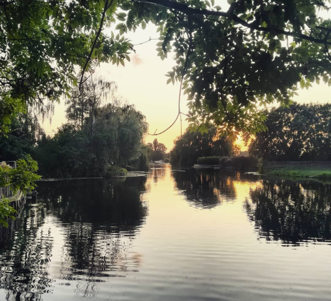 Enjoy nature in the Dutch Green Heart and row around the canals! #15