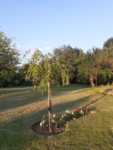 Montigny House private camping #8