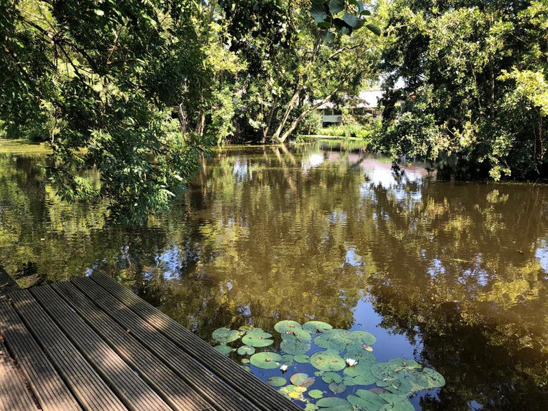 Row around the canals, see waterbirds and make a fire at night on our small camping! #11