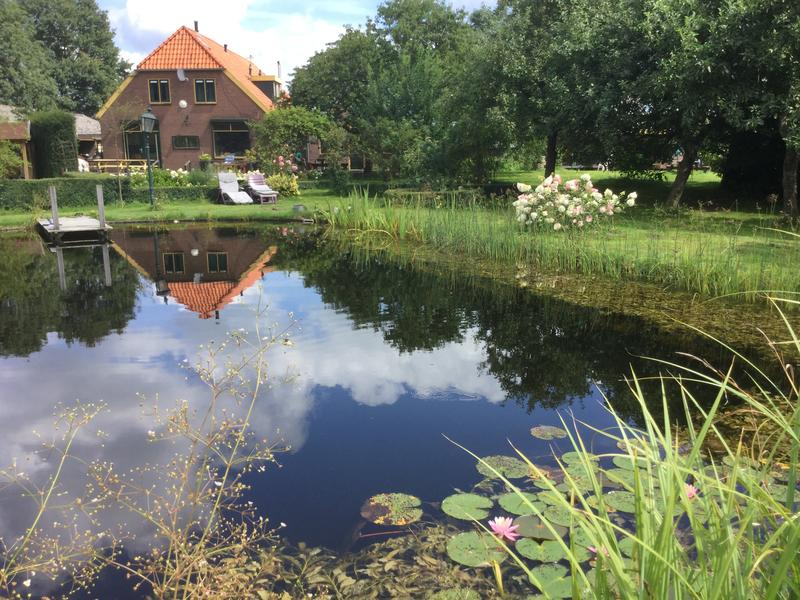 Romantic studio with swimming pond, fire pit and 2ha walking area. With fire bowl #1