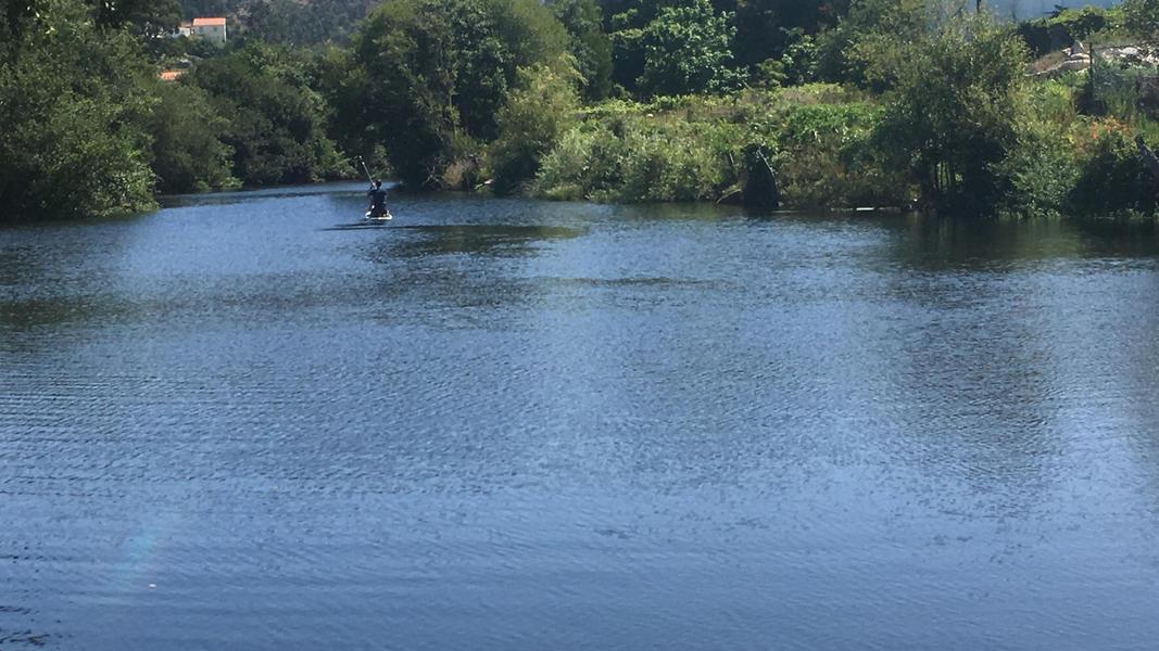 Riverbeach - A Natural quiet space #4