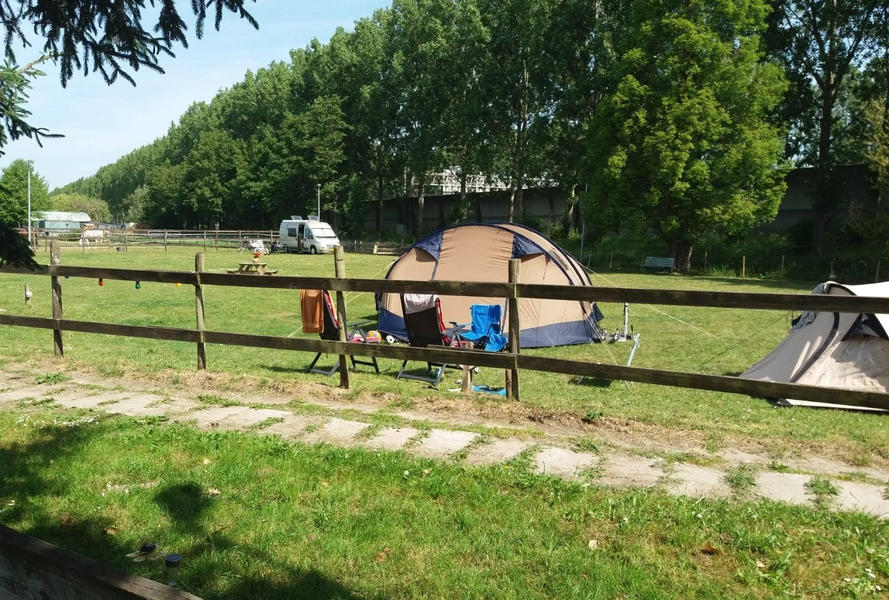 Camping at our mini campsite among the horses on the edge of the Eendenkooi nature reserve #22