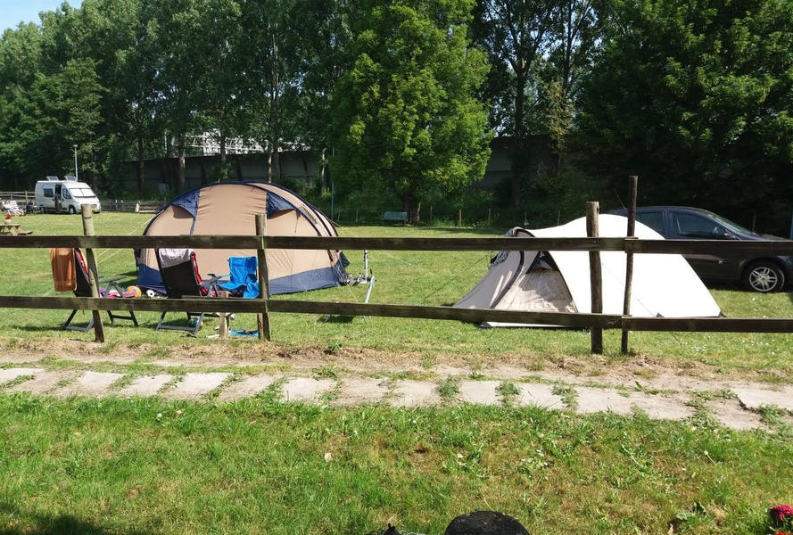 Camping at our mini campsite among the horses on the edge of the Eendenkooi nature reserve #26