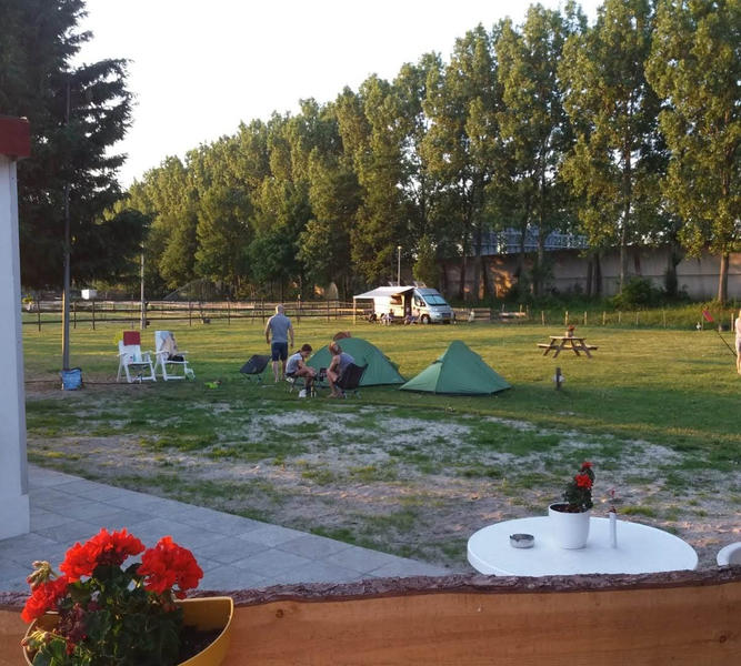 Camping at our mini campsite among the horses on the edge of the Eendenkooi nature reserve #27