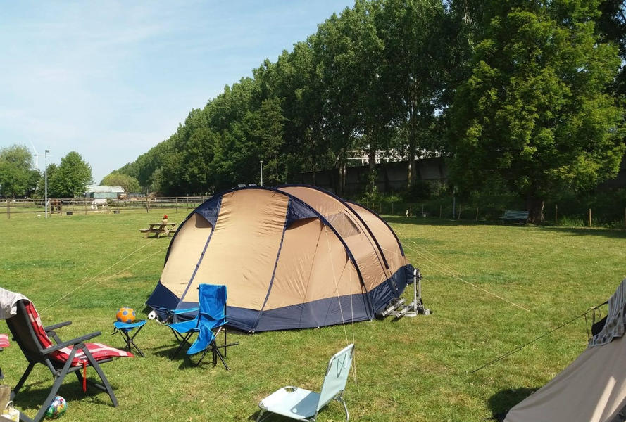 Camping at our mini campsite among the horses on the edge of the Eendenkooi nature reserve #2