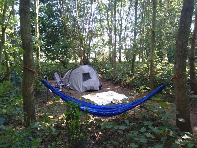 Kom tot jezelf in de tuin, in het bos, bij ons yogacentrum, grenzend aan landerijen #11