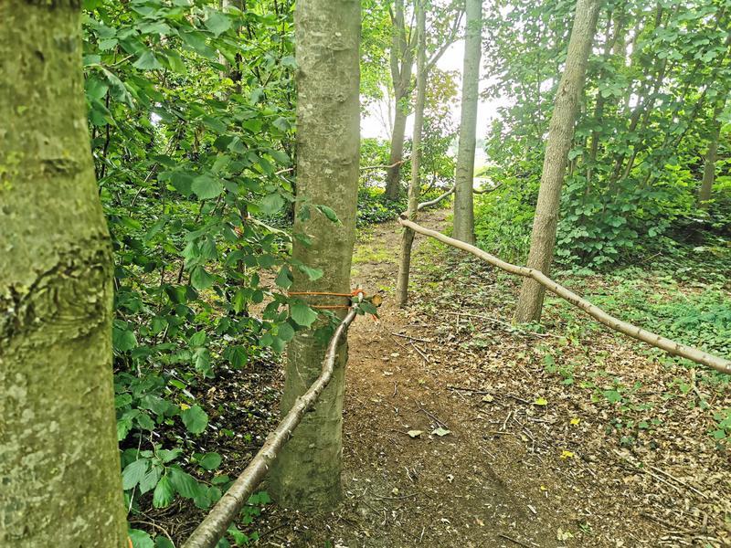 Kom tot jezelf in de tuin, in het bos, bij ons yogacentrum, grenzend aan landerijen #1