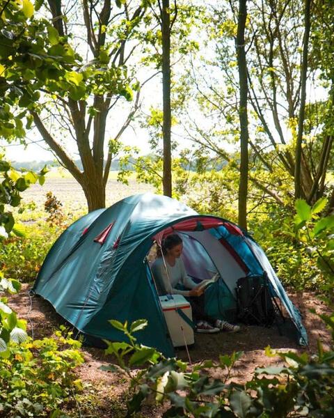 Kom tot jezelf in de tuin, in het bos, bij ons yogacentrum, grenzend aan landerijen #8