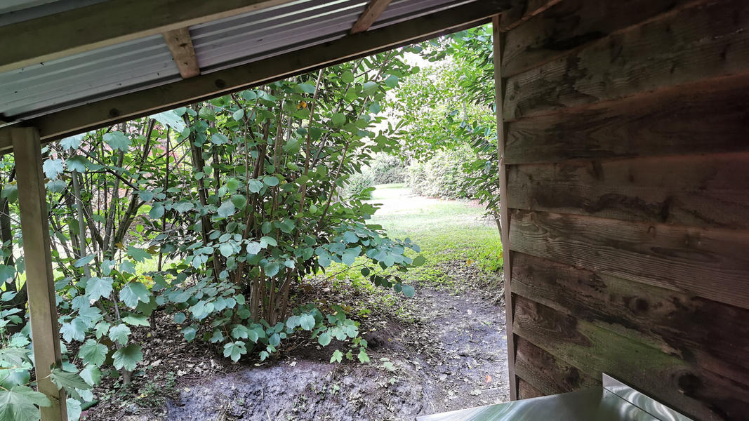 Come to yourself in the garden, in the forest, at our yoga center, adjacent to farmlands #9