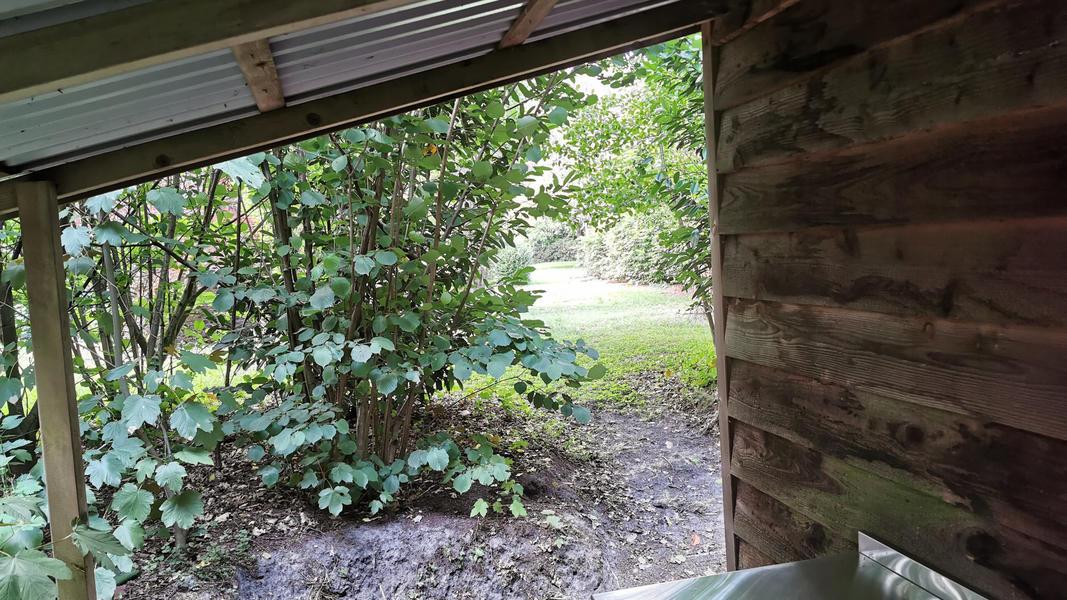 Kom tot jezelf in de tuin, in het bos, bij ons yogacentrum, grenzend aan landerijen #9