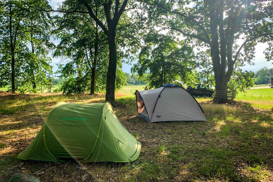 Campscape Karmijn 💛 #1